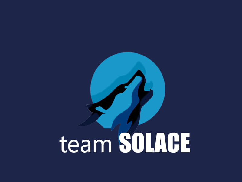 Team Solace